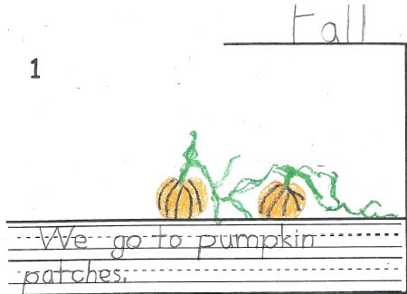 Go to pumpkin patches